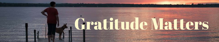 The Gratitude Project:  Gratitude Matters 3.0 Edition