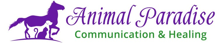 Sign in to Animal Paradise - Communication & Healing